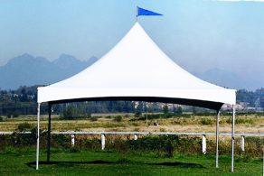 20' x 30' Tent