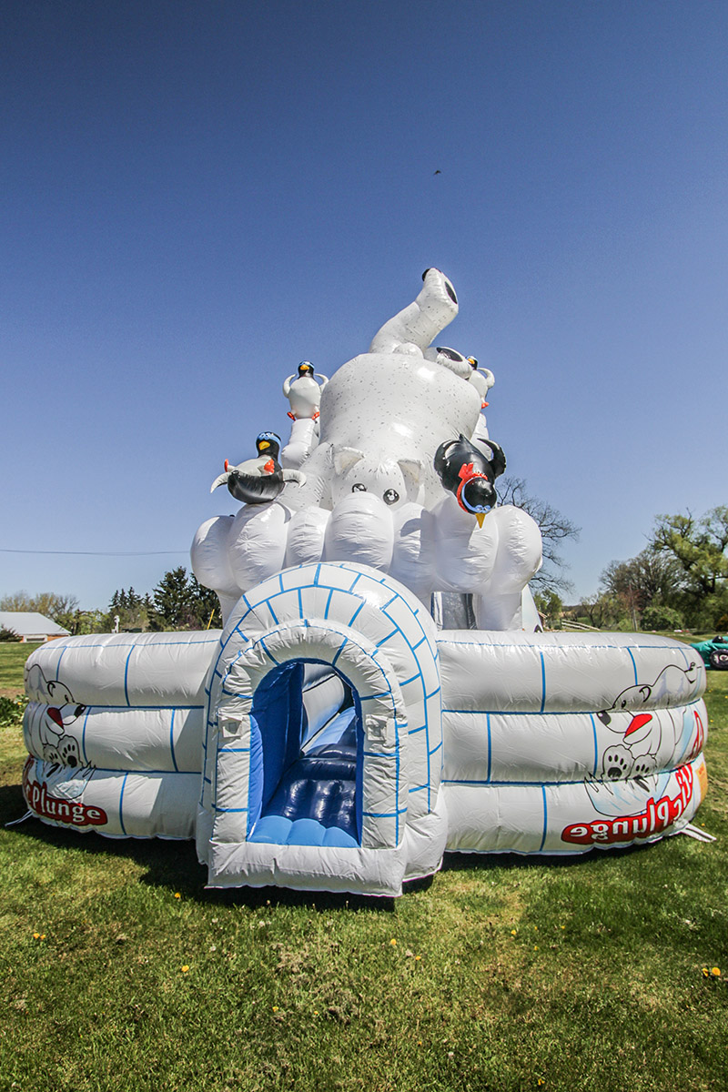Polar Bear Slide Air Bounce Inflatables Amp Party Rentals In Hamilton Burlington