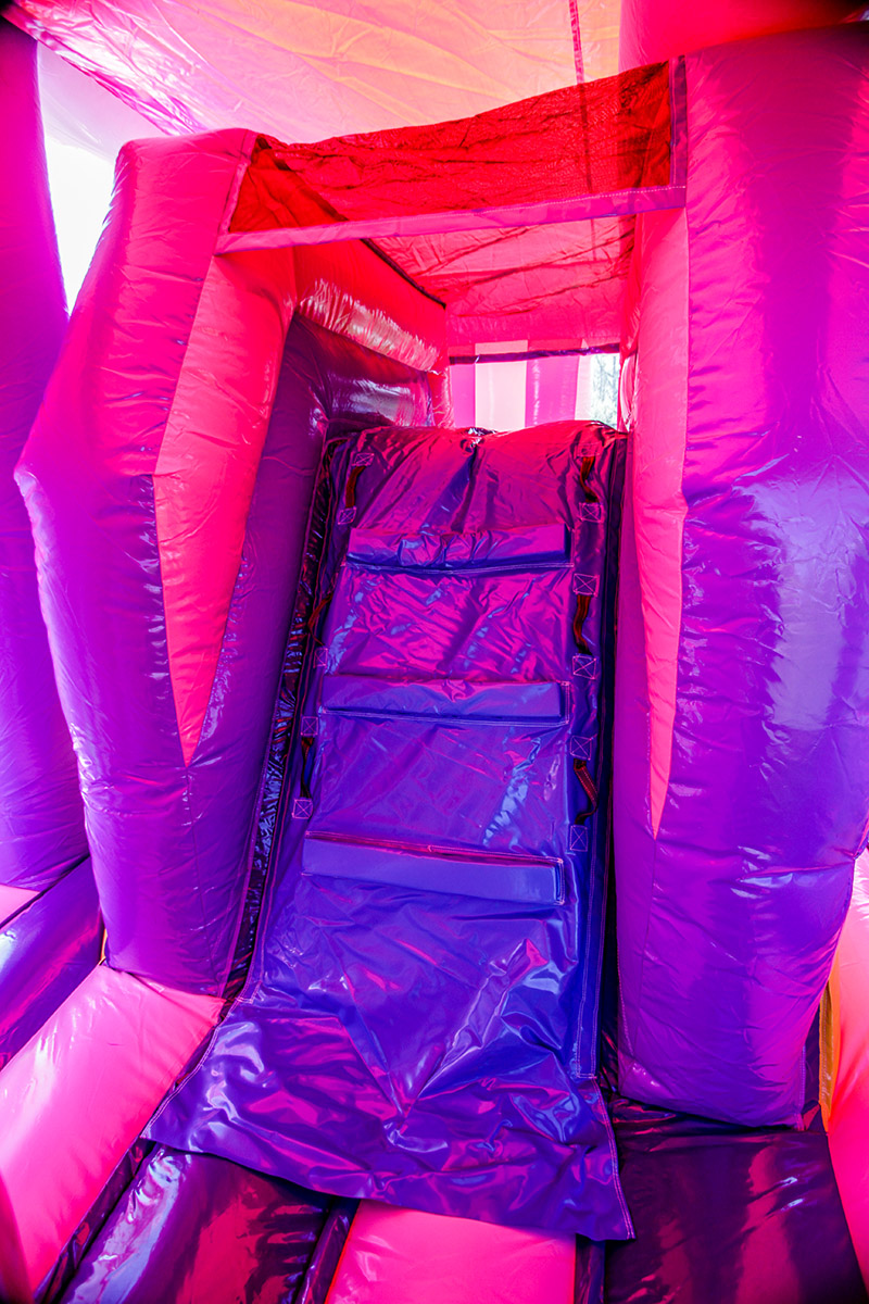 Princess 3 Princess Flower Castle Combo Air Bounce Inflatables Amp Party Rentals In